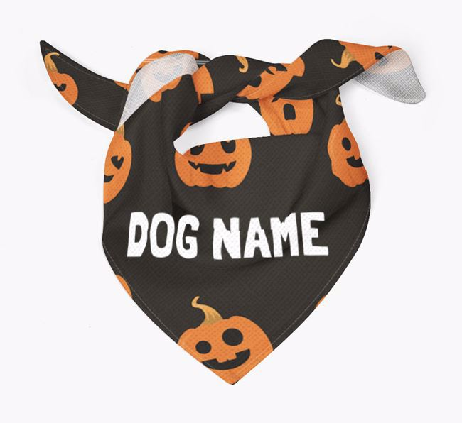 Personalised 'Pumpkin' Bandana for your Bichon Frise