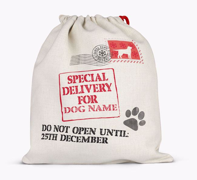 Personalised 'Special Delivery for ' Santa Sack Full