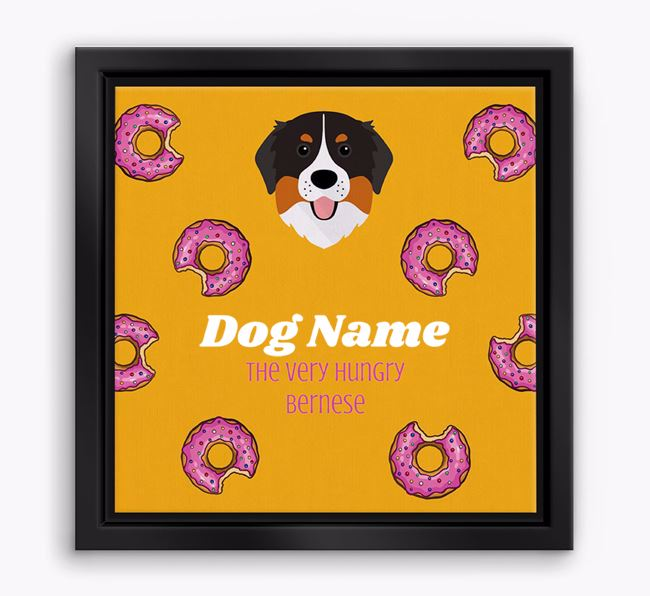 ' the hungry Bernese' Boxed Canvas Print