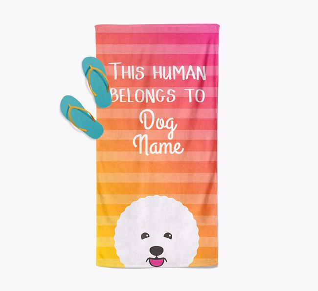 Personalised Pool Towel 'This Human Belongs To ' with Bichon Frise Icon
